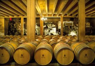 Winetasting & gastronomy