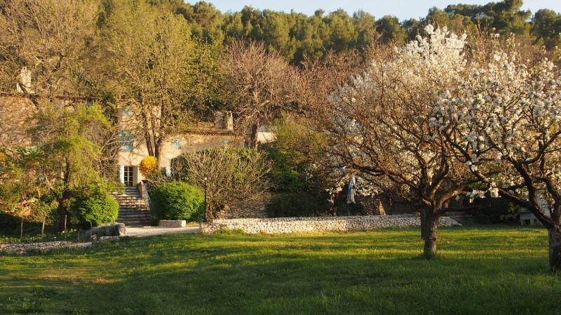 les mimosas aix en provence garden