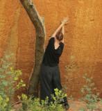 Atelier de Cezanne - Promenades dansées