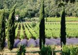Coteaux d'Aix - Luberon aix en provence office de tourisme centrale de réservation