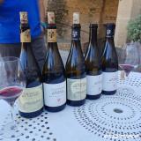 Excursion - Chateauneuf du Pape : Vin et confiserie