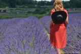 Excursion demi  journée -Vignoble, lavande et photo shooting