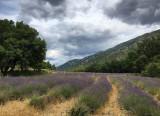 Randonnée du Patrimoine : PICASSO, CEZANNE & VAUVENARGUES