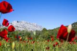 RANDONNEE sur les paysages de Cézanne
