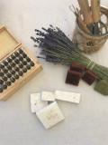 TERRE UGO - Atelier savon + Visite de la Maison et des champs de Lavande