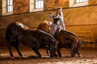 cabaret-equestre-70949