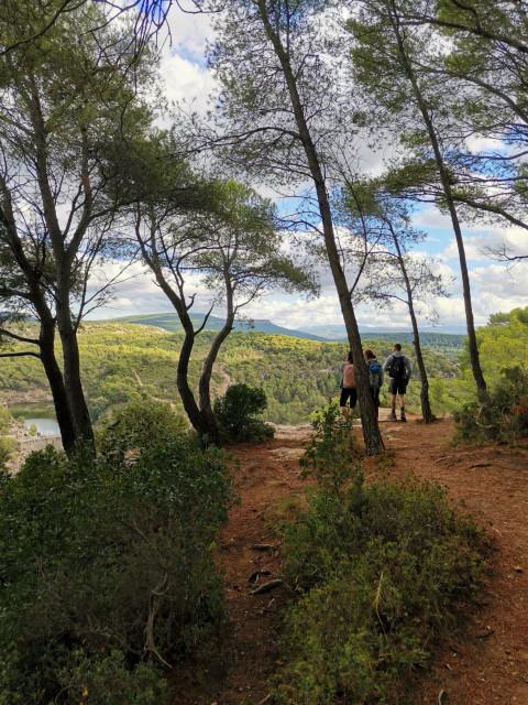 CONSCIOUS WALKING  around Sainte Victoire mountain
