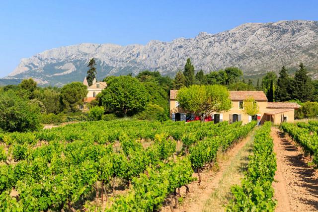 SOIREE 1 DOMAINE 1 CHEF : Pique nique au Domaine viticole du Loup Bleu
