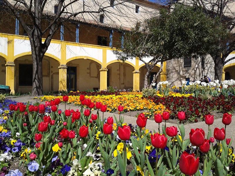 home arles Aix en Provence tourist office  booking center