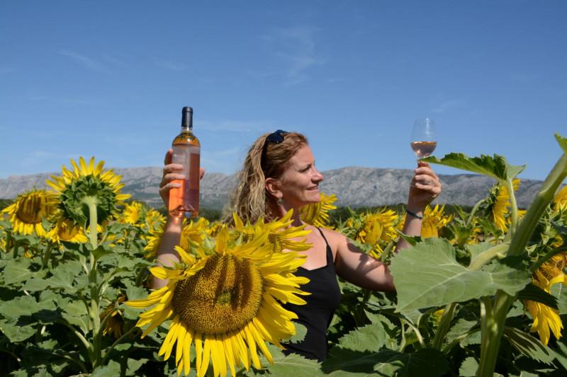 Excursion journée - La Provence gourmande -  Vin et huile d'olive