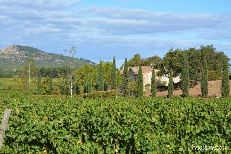 Excursion journée - Vignoble, jardin et villages du Luberon