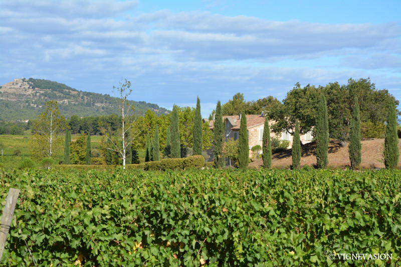 Excursion vin  et calisson