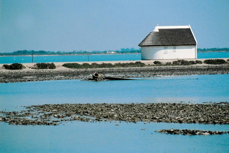 La Camargue : cabane de gardian