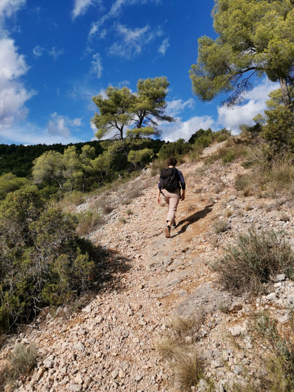 PICTORIAL HIKING - The footpathes of Cezanne