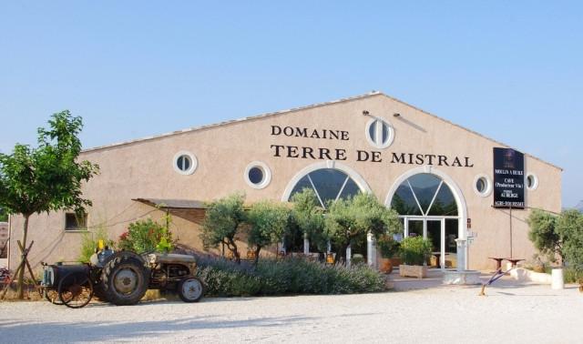 Visite guidée en anglais des ateliers viticoles et oléicoles & dégustations